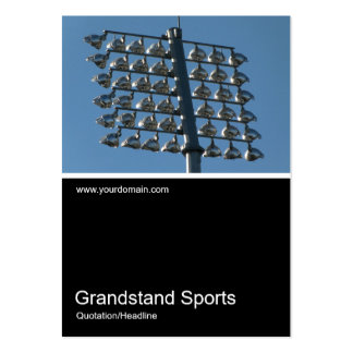 Half&Half Photo 0263 - Flood Lights Pack Of Chubby Business Cards