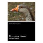 Half&Half Photo 0389 - Greylag Swan Goose Cross