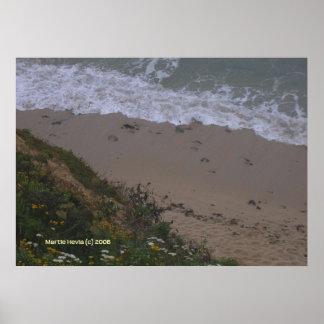 Half Moon Bay Private Beach Poster
