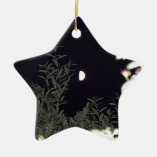 Half Moon Ceramic Star Decoration