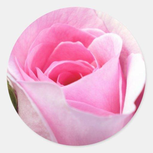 Half Open Pink Rosebud Round Stickers