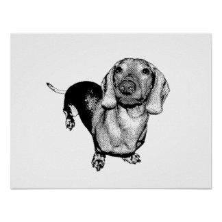 Halftone Black and White Photo Dachsund Doxie Poster