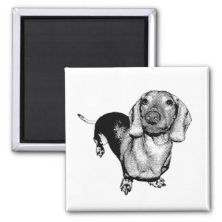 Halftone Black and White Photo Dachsund Doxie Square Magnet
