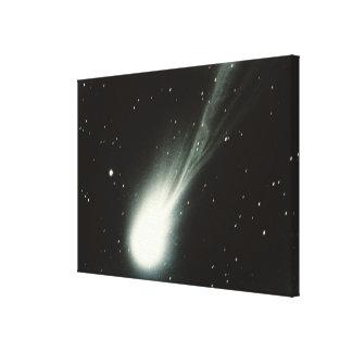 Halleys Comet Canvas Print