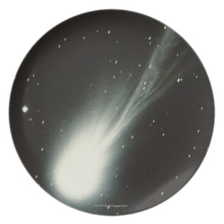 Halleys Comet Plate