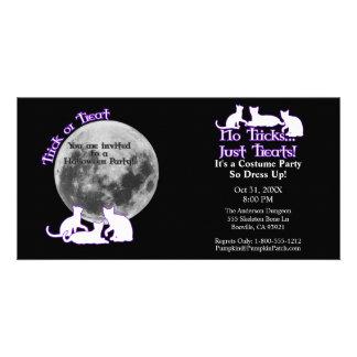 Halloween 3 Cats Photo Card Template