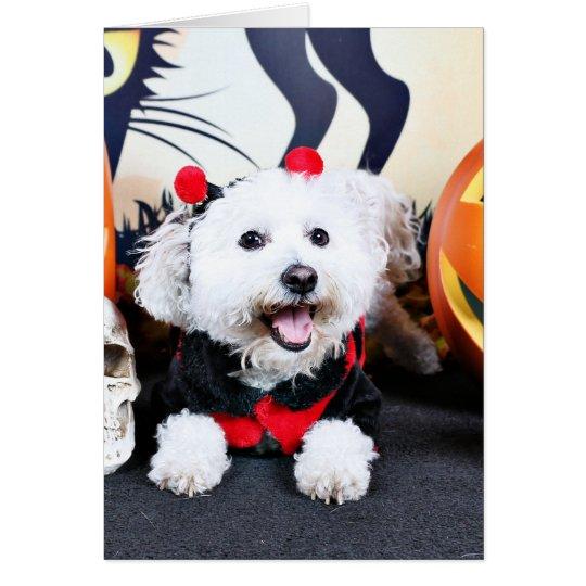 Halloween - Bichon Frise - Andi Card
