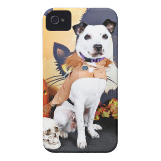Halloween - Border Collie - Tywin Case-Mate iPhone 4 Cases