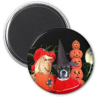 Halloween boxer dog magnet
