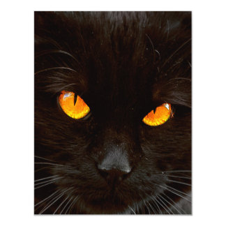 Halloween Cat's Face 11 Cm X 14 Cm Invitation Card