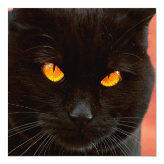 Halloween Cat's Face 13 Cm X 13 Cm Square Invitation Card