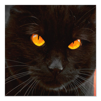 Halloween Cat's Face Magnetic Invitations