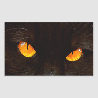 Halloween Cat's Face Rectangular Sticker