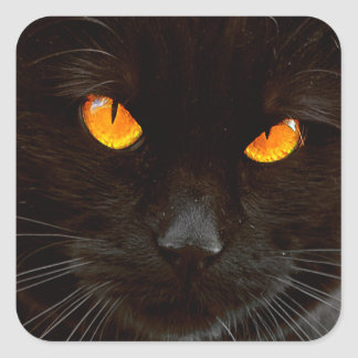 Halloween Cat's Face Square Sticker