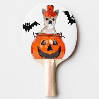 Halloween chihuahua dog