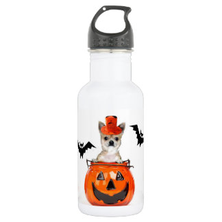 Halloween Chihuahua dog 532 Ml Water Bottle