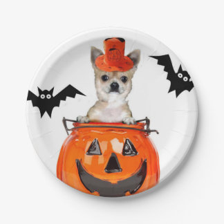 Halloween Chihuahua dog 7 Inch Paper Plate