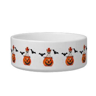Halloween chihuahua dog pet bowl
