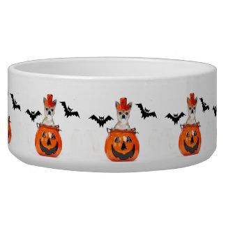 Halloween chihuahua dog pet food bowl