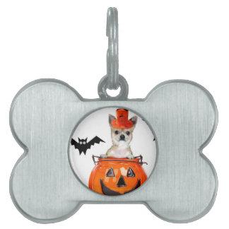 Halloween chihuahua dog pet ID tags