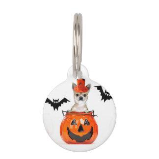Halloween chihuahua dog pet ID tag