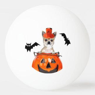 Halloween chihuahua dog ping pong ball