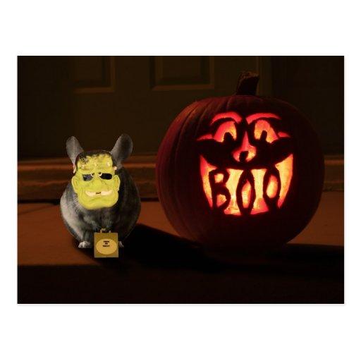 Halloween Chinchilla Postcard