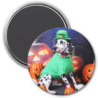 Halloween - Dalmatian - Dash Magnets