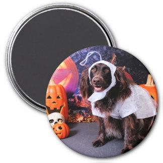 Halloween - Deutscher Wachtelhund - Matilda Magnet