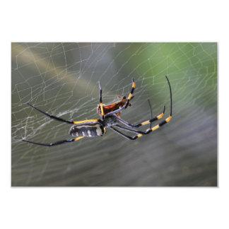 Halloween Golden Spider 9 Cm X 13 Cm Invitation Card