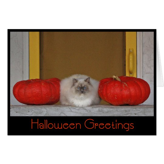 """Halloween Greetings"" greeting card"