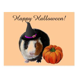 Halloween Guinea Pig Postcard