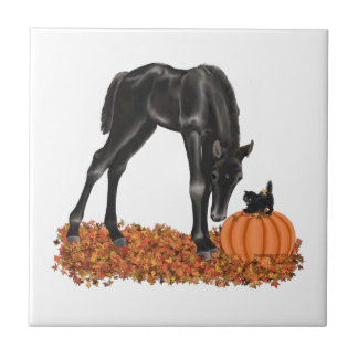 Halloween Horse Colt Kitty Small Square Tile