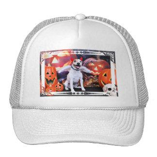 Halloween - Jack Russell - Bailey Mesh Hat