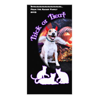 Halloween - Jack Russell - Bailey Photo Greeting Card