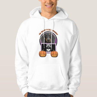 Halloween - Just a Lil Spooky - Doxie - Winston Pullover