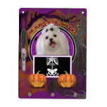 Halloween - Just a Lil Spooky - Maltese