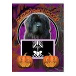 Halloween - Just a Lil Spooky - Newfoundland
