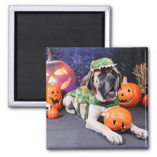 Halloween - Mastiff - Lach Fridge Magnets