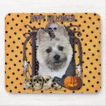 Halloween Nightmare - Cairn Terrier - Teddy Bear