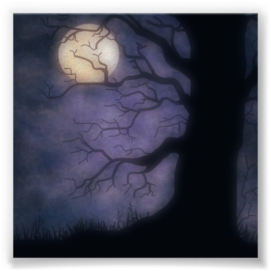 Halloween Nite Photo Backdrop Poster