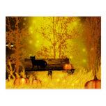 Halloween park Postcard