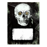 Halloween Pirate Skull Postcard