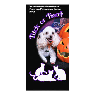 Halloween - Poodle - Dolly Photo Card Template