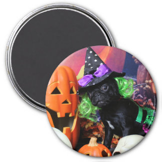 Halloween - Pug - Daisy Mae Magnet