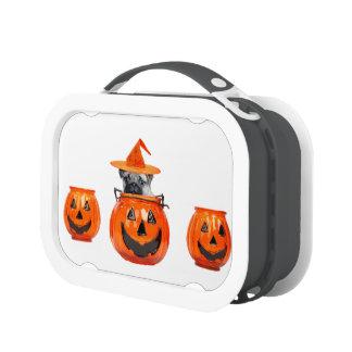 Halloween pug dog lunch box