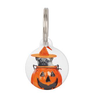 Halloween pug dog pet name tags
