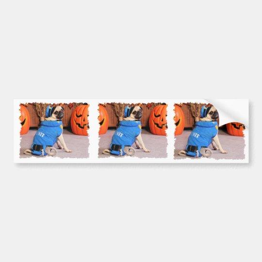Halloween - Pug - QuaziMoto - Stephanie Bumper Sticker