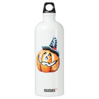 Halloween Pumkin Water Bottle