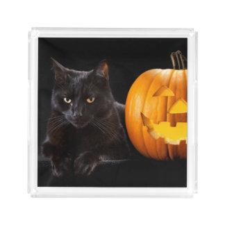 Halloween pumpkin and black cat acrylic tray